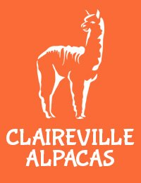 Claireville Alpaca farm based in Fife Scotland